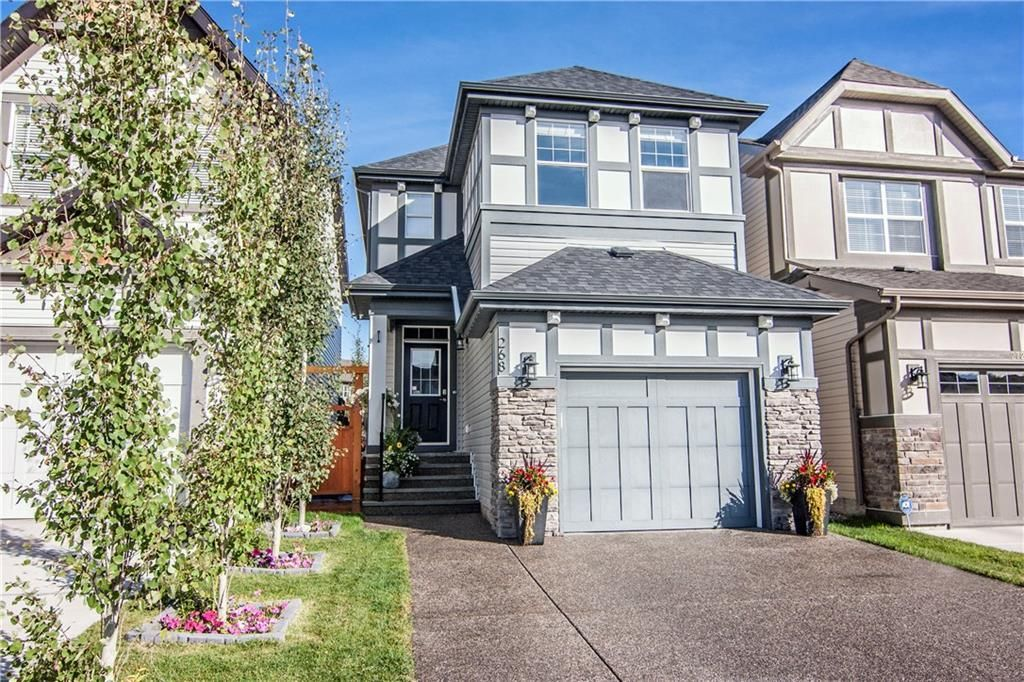 Main Photo: 268 CHAPARRAL VALLEY Mews SE in Calgary: Chaparral Detached for sale : MLS®# C4208291