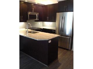 Photo 3: 07 85 East Liberty Street in Toronto: Niagara Condo for lease (Toronto C01)  : MLS®# C2942948