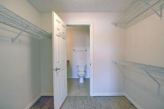 Photo 30: 201 4407 23 Street in Edmonton: Zone 30 Condo for sale : MLS®# E4254389