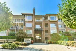 """Photo 19: 306 4728 DAWSON Street in Burnaby: Brentwood Park Condo for sale in """"MONTAGE"""" (Burnaby North)  : MLS®# R2300528"""