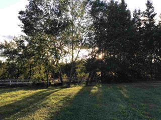 Photo 21: 51121 Range Road 270: Rural Parkland County House for sale : MLS®# E4248084