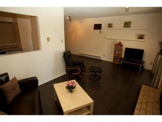 Photo 11: 220 Goulet Street in WINNIPEG: St Boniface Condominium for sale (South East Winnipeg)  : MLS®# 1215397