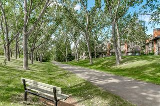 Photo 49: 19 8020 SILVER SPRINGS Road NW in Calgary: Silver Springs Row/Townhouse for sale : MLS®# C4261460