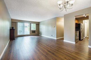 """Photo 8: 210 12096 222 Street in Maple Ridge: West Central Condo for sale in """"CANUCK PLAZA"""" : MLS®# R2608661"""