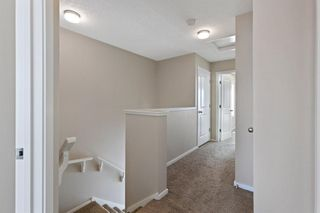 Photo 15:  in Calgary: Evanston Row/Townhouse for sale : MLS®# A1073817
