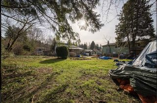 Photo 7: 3531 ALLAN Road in North Vancouver: Lynn Valley House for sale : MLS®# R2542346