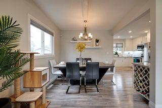 Photo 12: 6707 87 Avenue in Edmonton: Zone 18 House for sale : MLS®# E4245254