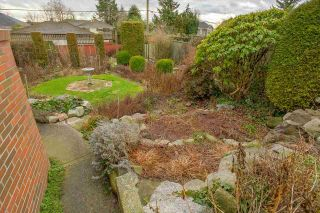 Photo 17: 950 W 57TH Avenue in Vancouver: South Cambie House for sale (Vancouver West)  : MLS®# R2233368