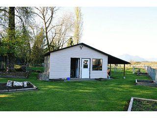 Photo 27: 20981 132ND Avenue in Maple Ridge: Northwest Maple Ridge House for sale : MLS®# V1116009