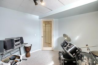 Photo 33: 47 INVERNESS Grove SE in Calgary: McKenzie Towne Detached for sale : MLS®# C4301288