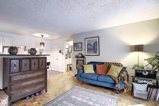Photo 9: 303 215 25 Avenue SW in Calgary: Mission Apartment for sale : MLS®# A1063932