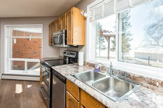 Photo 19: 21315 TWP RD 553: Rural Strathcona County House for sale : MLS®# E4233443