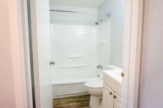 Photo 6: 302 1948 COQUITLAM Avenue in Port Coquitlam: Glenwood PQ Condo for sale : MLS®# R2621147