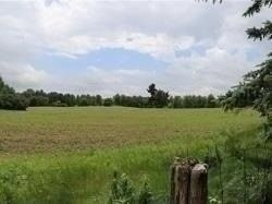 Photo 17: 15886 Centreville Creek Road in Caledon: Rural Caledon House (2-Storey) for sale : MLS®# W5310399