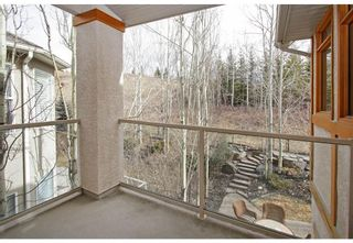 Photo 34: 83 DISCOVERY RIDGE Boulevard SW in Calgary: Discovery Ridge Detached for sale : MLS®# A1125675