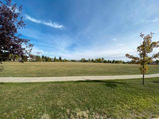 Photo 39: 2080 HADDOW Drive in Edmonton: Zone 14 House for sale : MLS®# E4263342