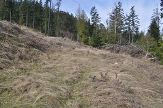 Photo 7: Lot 18 Trustees Trail in : GI Salt Spring Land for sale (Gulf Islands)  : MLS®# 869902