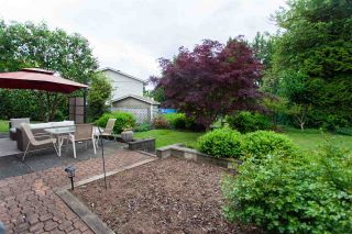 Photo 31: 15116 PHEASANT Drive in Surrey: Bolivar Heights House for sale (North Surrey)  : MLS®# R2583067