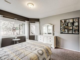 Photo 42: 54 Mount Robson Close SE in Calgary: McKenzie Lake Detached for sale : MLS®# A1096775