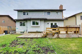 Photo 39: 23 Castlefall Way NE in Calgary: Castleridge Detached for sale : MLS®# A1141276