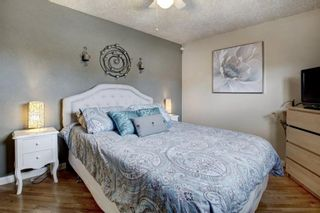 Photo 12: 3303 39 Street SE in Calgary: Dover Detached for sale : MLS®# A1084861