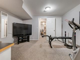 Photo 41: 44 MAITLAND Green NE in Calgary: Marlborough Park Detached for sale : MLS®# A1030134