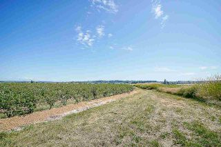 Photo 18: 16397 40 Avenue in Surrey: Serpentine Agri-Business for sale (Cloverdale)  : MLS®# C8038664