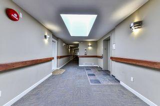 Photo 14: 406 8084 120A Street in Surrey: Queen Mary Park Surrey Condo for sale : MLS®# R2216840