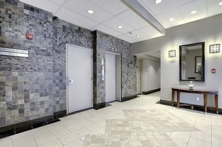 Photo 34: 302 429 14 Street NW in Calgary: Hillhurst Apartment for sale : MLS®# A1075167