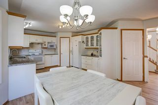 Photo 14: 359 Mountain Park Drive SE in Calgary: McKenzie Lake Detached for sale : MLS®# A1148818