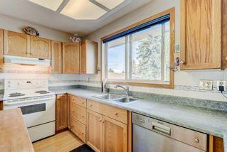 Photo 11: 114 Pinetree Bay NE in Calgary: Pineridge Detached for sale : MLS®# A1151101
