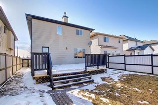 Photo 39: 253 Elgin Way SE in Calgary: McKenzie Towne Detached for sale : MLS®# A1087799