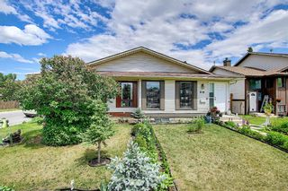 Photo 40: 217 Templemont Drive NE in Calgary: Temple Semi Detached for sale : MLS®# A1120693
