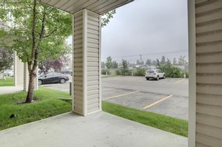 Photo 20: 144 1717 60 Street SE in Calgary: Red Carpet Apartment for sale : MLS®# A1131300
