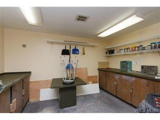 Photo 11: 403 1005 McKenzie Ave in VICTORIA: SE Quadra Condo for sale (Saanich East)  : MLS®# 647040
