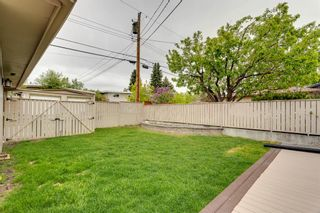 Photo 41: 5007 Nolan Road NW in Calgary: North Haven Detached for sale : MLS®# A1100705