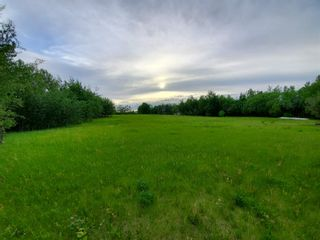 Photo 5: 53145 RGE RD 223: Rural Strathcona County Rural Land/Vacant Lot for sale : MLS®# E4250369