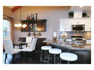 "Photo 3: 97 24185 106B Avenue in Maple Ridge: Albion Townhouse for sale in ""TRAILS EDGE"" : MLS®# V1045522"
