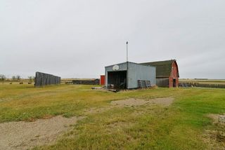 Photo 8: : Rural Mountain View County Agri-Business for sale : MLS®# C4135558