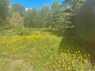 """Photo 8: DL 785 LEE Avenue: Willow River Land for sale in """"Willow River"""" (PG Rural East (Zone 80))  : MLS®# R2589317"""