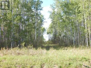 Photo 3: 000 1084 in High Level: Vacant Land for sale : MLS®# A1113519