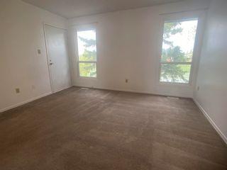 Photo 16: 43 4610 17 Avenue in Edmonton: Zone 29 Townhouse for sale : MLS®# E4245281