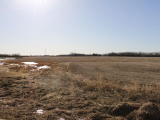 Photo 4: RGE RD 175 TWP RD 500: Rural Beaver County Rural Land/Vacant Lot for sale : MLS®# E4233179