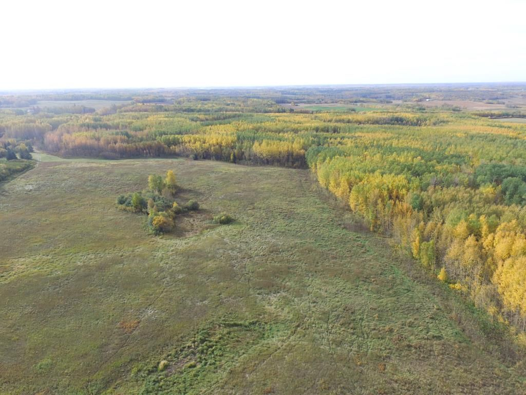 Photo 4: Photos: N1/2 SE19-57-1-W5: Rural Barrhead County Rural Land/Vacant Lot for sale : MLS®# E4217154