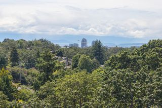 Photo 63: 1319 Tolmie Ave in : Vi Mayfair House for sale (Victoria)  : MLS®# 878655