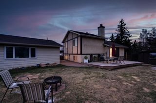 Photo 41: 164 Berwick Drive NW in Calgary: Beddington Heights Detached for sale : MLS®# A1095505