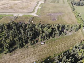 Photo 10: 39-33048 Range Road 51: Rural Mountain View County Land for sale : MLS®# A1085992