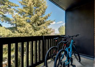 Photo 16: 404 507 57 Avenue SW in Calgary: Windsor Park Apartment for sale : MLS®# A1112895