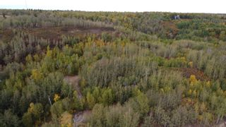 Photo 12: Hwy 11 & RR 53: Rural Parkland County Rural Land/Vacant Lot for sale : MLS®# E4265869
