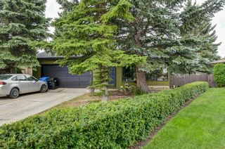 Photo 44: 88 Berkley Rise NW in Calgary: Beddington Heights Detached for sale : MLS®# A1127287
